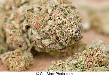 primo piano, marijuana, germoglio, estremo