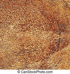 primo piano, quadrato, vecchio, ceppo, colorare, cornice, struttura, grano legno, naturale