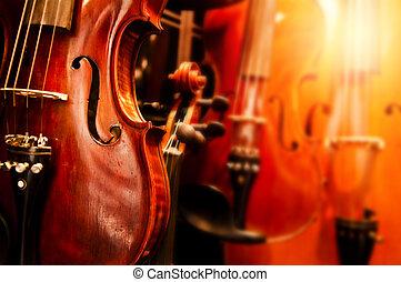 primo piano, violini