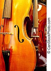 primo piano, violino