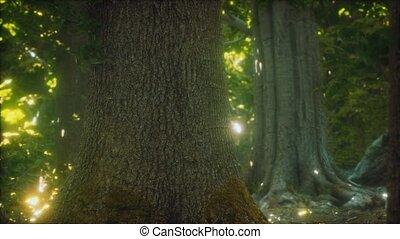 primordial, terrestre, forêt, mossed
