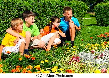 primos, jardim flor