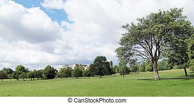 Primrose Hill, London - Primrose Hill park in London England...