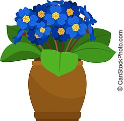 Primrose house plant in flower pot, vector icon on white background