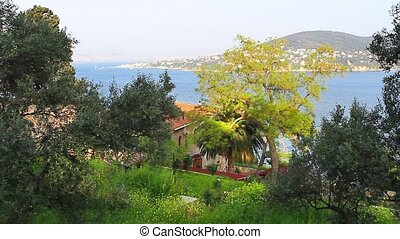 Prince Island - Heybeliada, Prince Islands in Istanbul,...