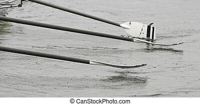 principiante, remos, barco, tripulación