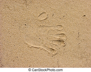 Print of hand in sand.