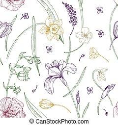 printemps, élégant, contour, schéma structure, seamless, arrière-plan., magnifique, dessiné, blanc, toile fond., emballage, illustration, main, fleurs, impression, papier peint, naturel, papier, lignes, vecteur, fleurir