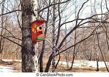 printemps, arbre, birdhouse