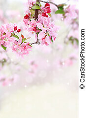 printemps, arbre, fleurs
