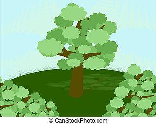 printemps, arbre