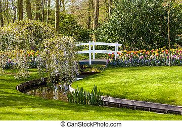 printemps, arrière-plan., jardin, aménagé