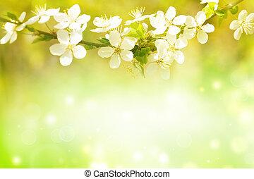printemps, art abstrait, arrière-plan., fleurir
