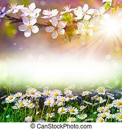 printemps, art abstrait, fond, fleurir