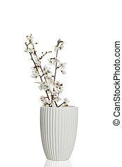 printemps, blanc, flowers.