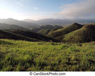 printemps, californie