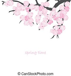printemps, carte, branche, cerise