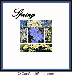 printemps, collage