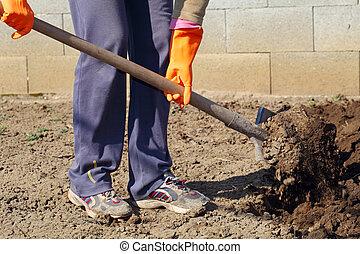 printemps, creuser, shovel., sol