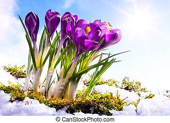 printemps, florwer, art, fond