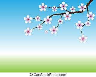 printemps, fond