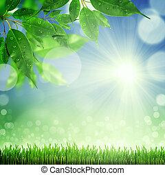 printemps, fond, nature