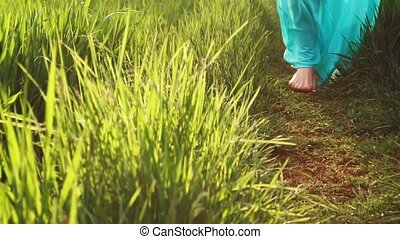 printemps, grass., luxuriant, promenades, pieds nue, femme