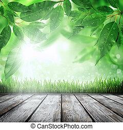 printemps, herbe, fond, nature
