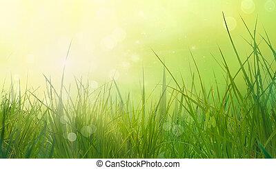 printemps, herbe