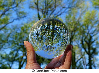 printemps, lentille, balle, cristal vert, beau, arbres, capturé, par