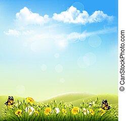 printemps, nature, fond, à, a, herbe verte, bleu, ciel, à, clouds., vector.