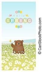 printemps, ours, 2, fond, bonjour, paysage