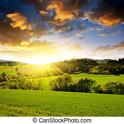 printemps, paysage, sunset.