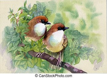 printemps, peinture, oiseaux, collection