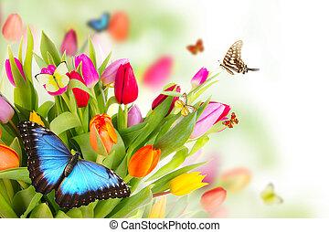 printemps, pré
