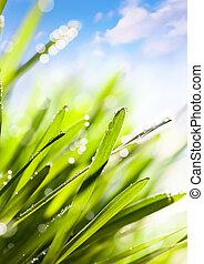 printemps, résumé, nature, fond