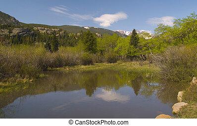 printemps, rockies, étang
