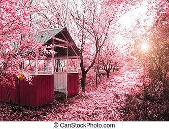 printemps, rose, photo), (infrared