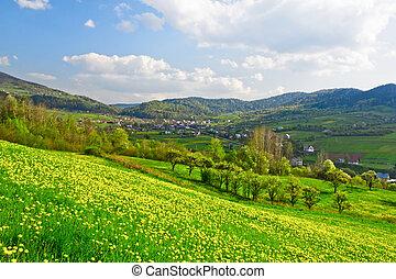 printemps, vallée, vert