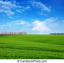printemps, vert, jour, champ
