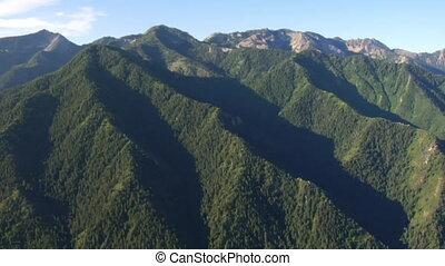 prise vue aérienne, de, forêt verte, et, montagnes