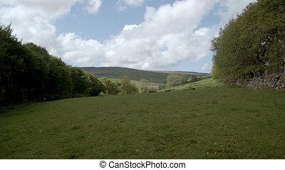 prise vue large, collines, irlande