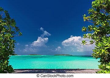Pristine beach on tropical island day framed by green trees