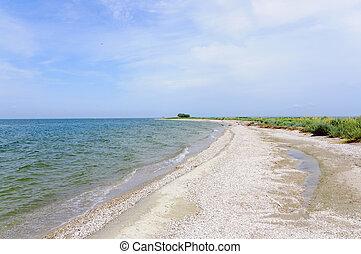 Pristine shelly beach