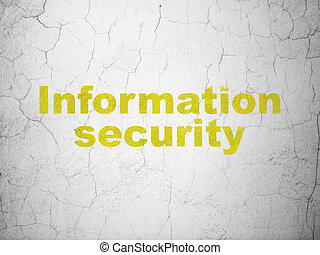Privacy concept: Information Security on wall background