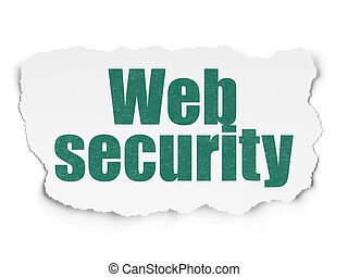 Privacy concept: Web Security on Torn Paper background
