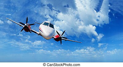 Private airplane inflight