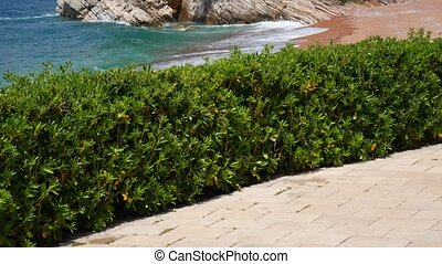 Private beach of the hotel Sveti Stefan, near the island. Monten