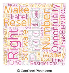 Private Label Resell Rights What You Need to Know 1 text background wordcloud concept