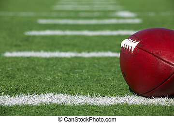 Pro American Football on the Field
